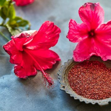 hibiscus_rooibos_v1_263